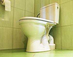 Toilet in a bathroom.